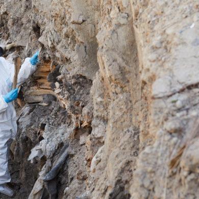Ecologist examining the rocks